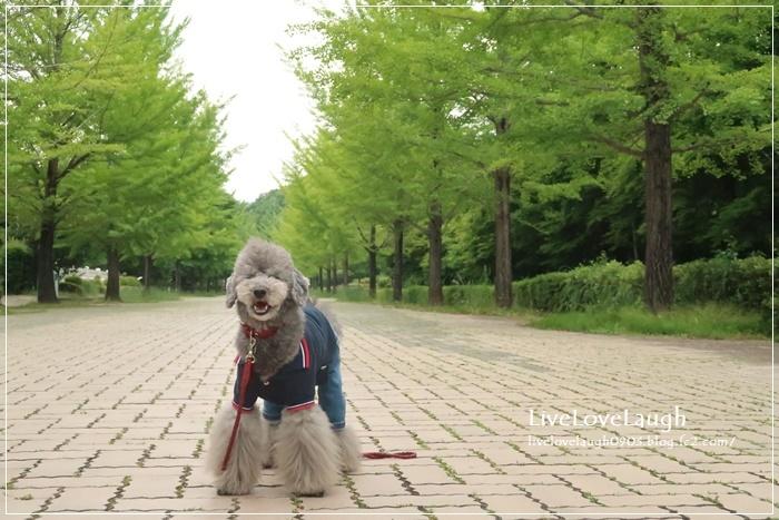 IMG_7289なめ公園