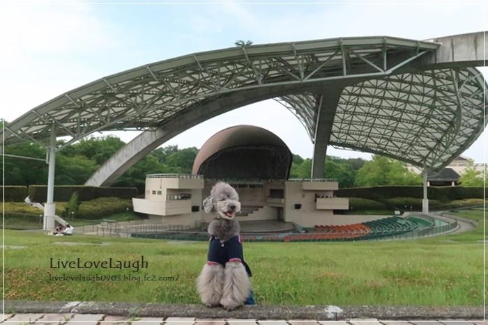 IMG_7299なめ公園