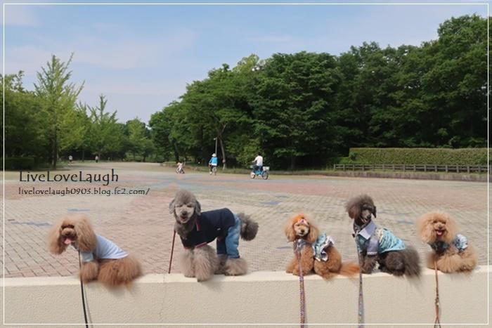 IMG_7312なめ公園