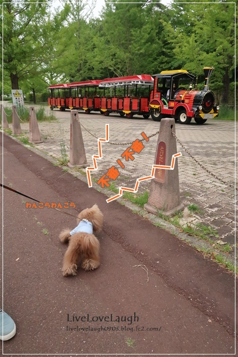 IMG_7342なめ公園