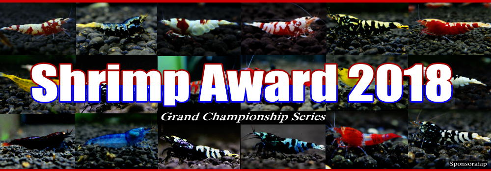 ShrimpAward2018main.jpg