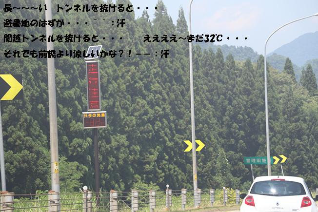 0A1A7059-317526669.jpg