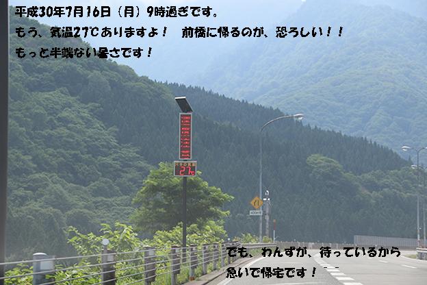 0A1A7240-31456666.jpg