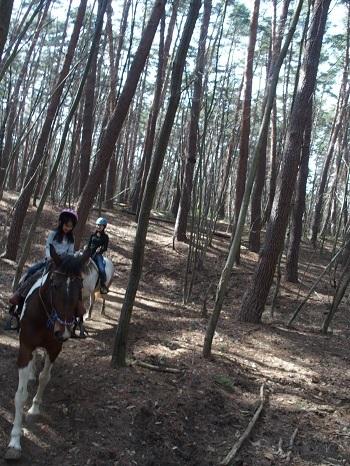 八ヶ岳 乗馬 リゾナーレ