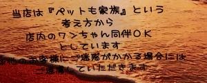 IMG_7150_20180814101354f7e.jpg