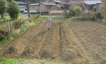 雑草、ホトケの座・6