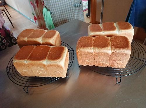 完成生食パン
