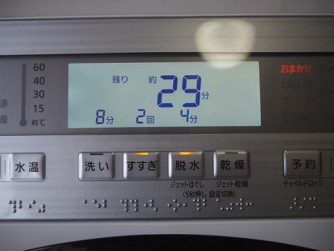 P7200255.jpg
