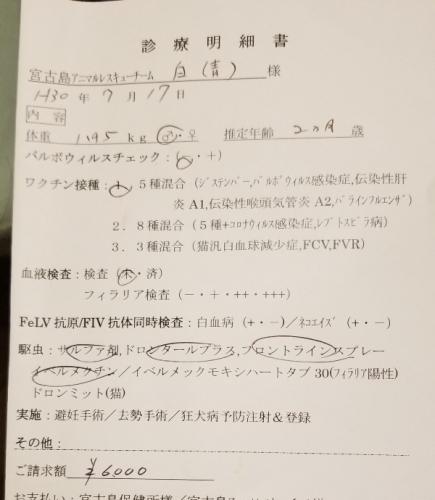 275ナノ医療 (2)