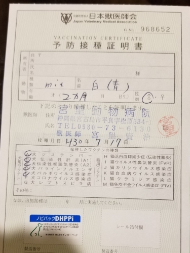 275ナノ医療 (1)