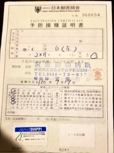 276ローザ医療 (1)