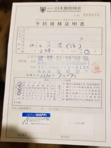 279ホクト医療 (2)