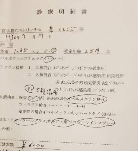 280コナツ医療 (2)
