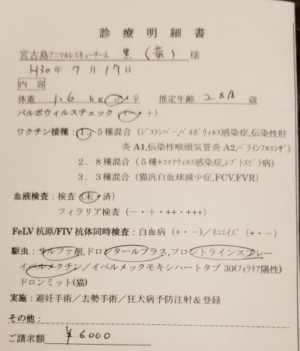 281リュウセイ医療 (1)