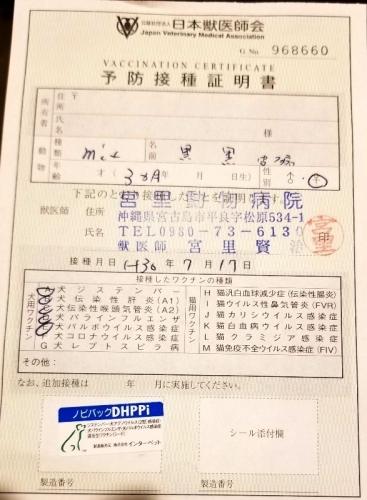282シャロン医療 (1)