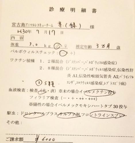 285カイ医療 (1)