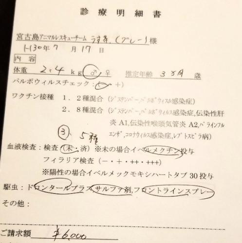 286ネイト医療 (1)