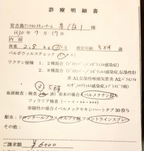 287マリオ医療 (2)