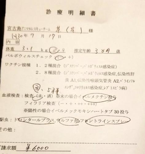 289ユズル医療 (2)