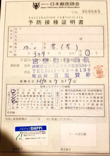 289ユズル医療 (1)