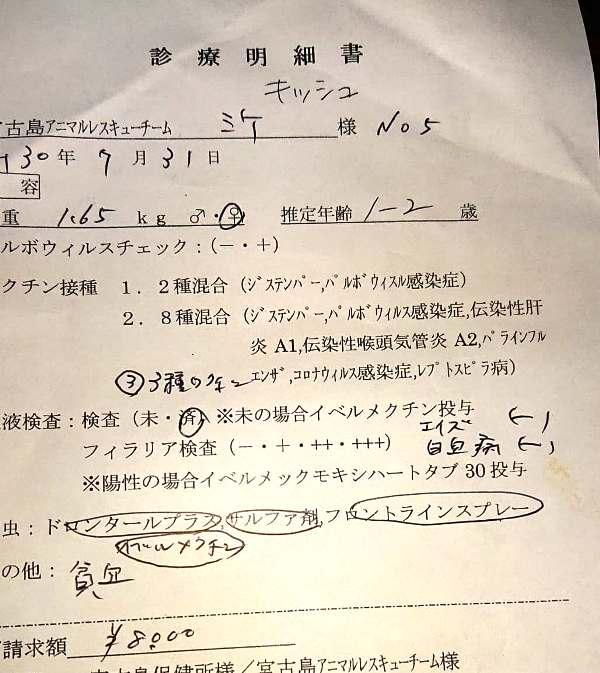 C24キッシュ医療明細