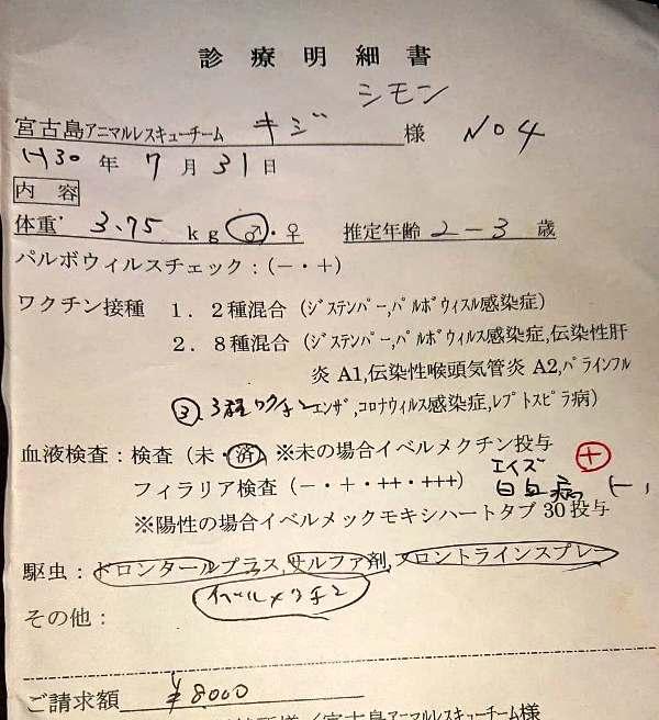 C26シモン医療