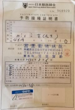 261リンゴ医療 (2)