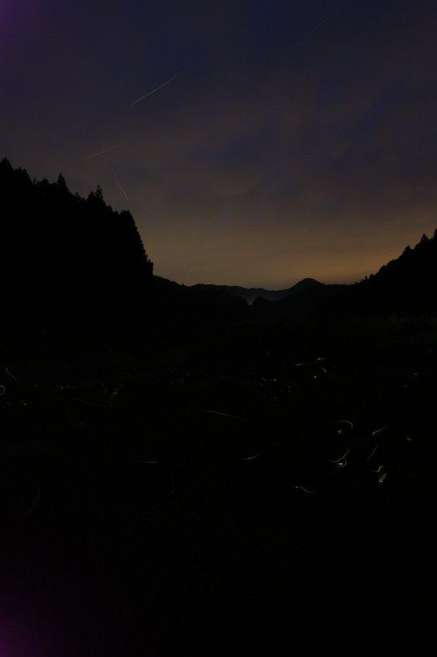 2012年6月8日の祓川の蛍