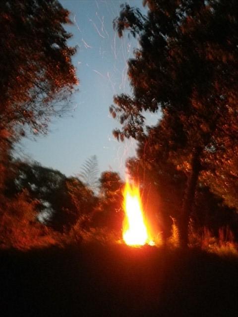 落ち葉と竹を燃やした!