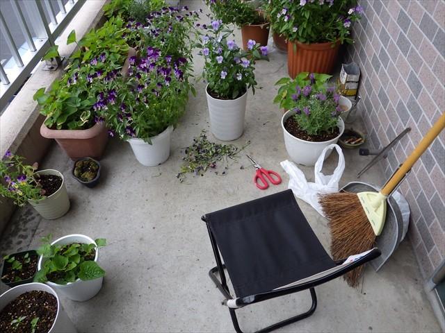 玄関先で草花の手入れ