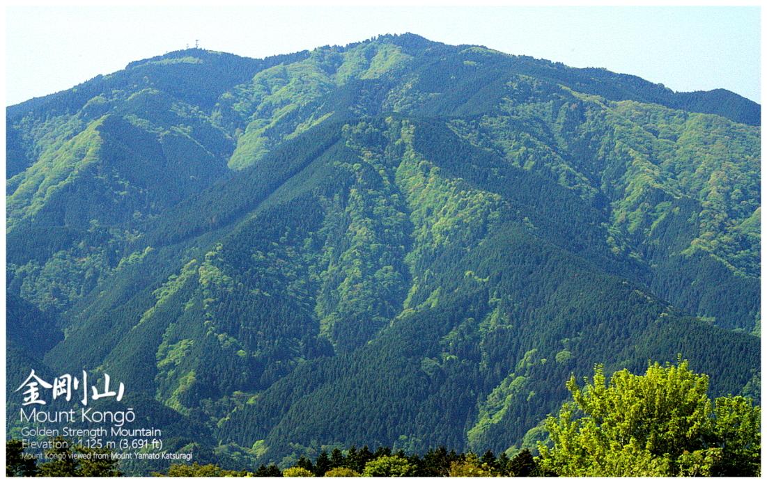 金剛山 関西の山