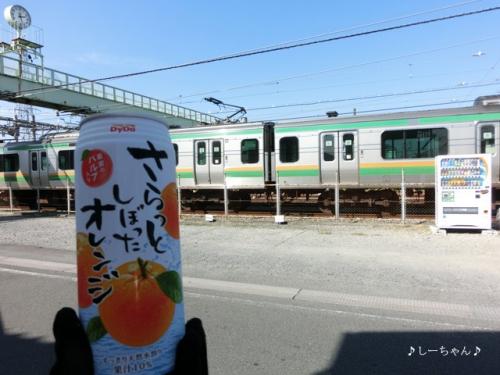 ダイドー_03