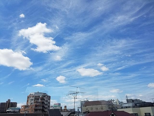 20180819_095630_R.jpg