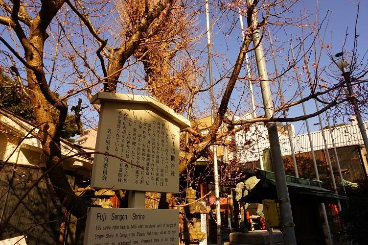 03 富士浅間神社近景