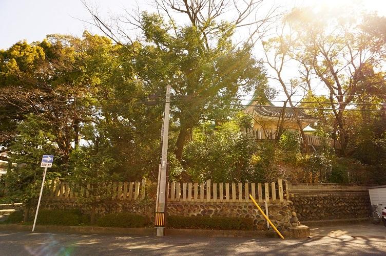 10 白山神社(古墳括れ部)