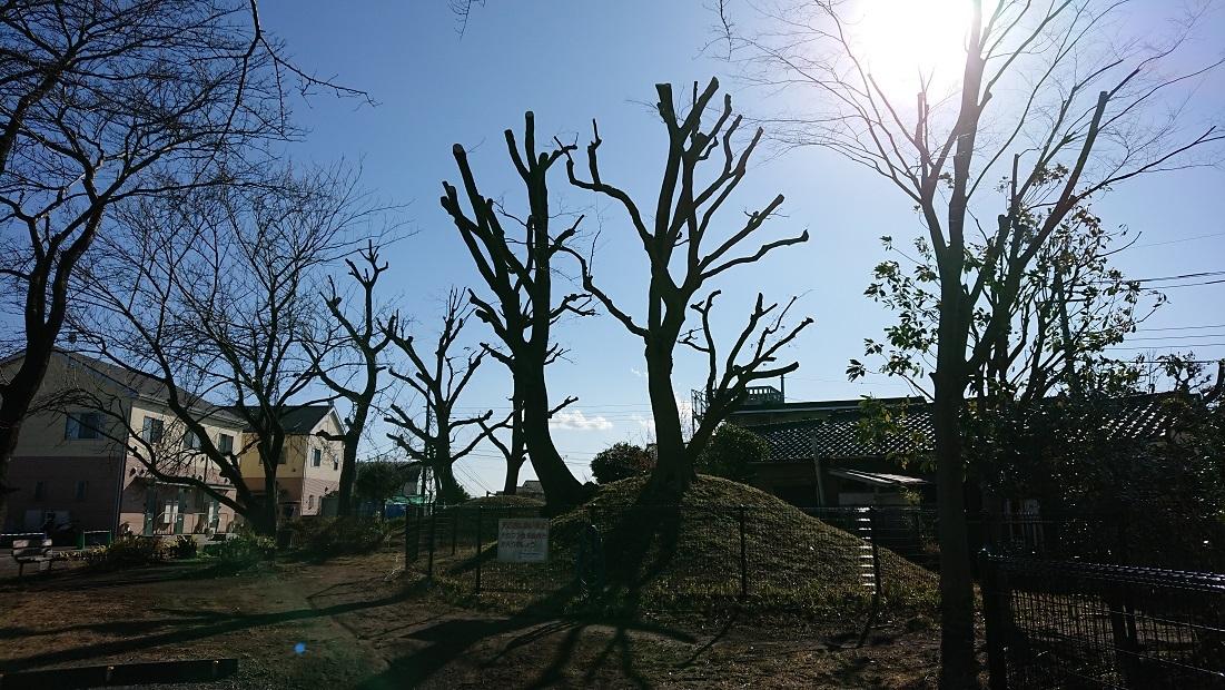 06 五所塚近景(南側の塚上の木々)