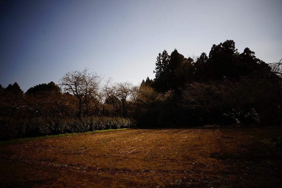 07 東木倉古墳群周辺