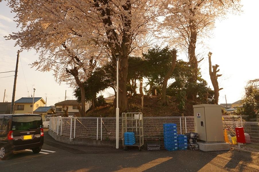 02 木曽富士塚(提灯塚)全景