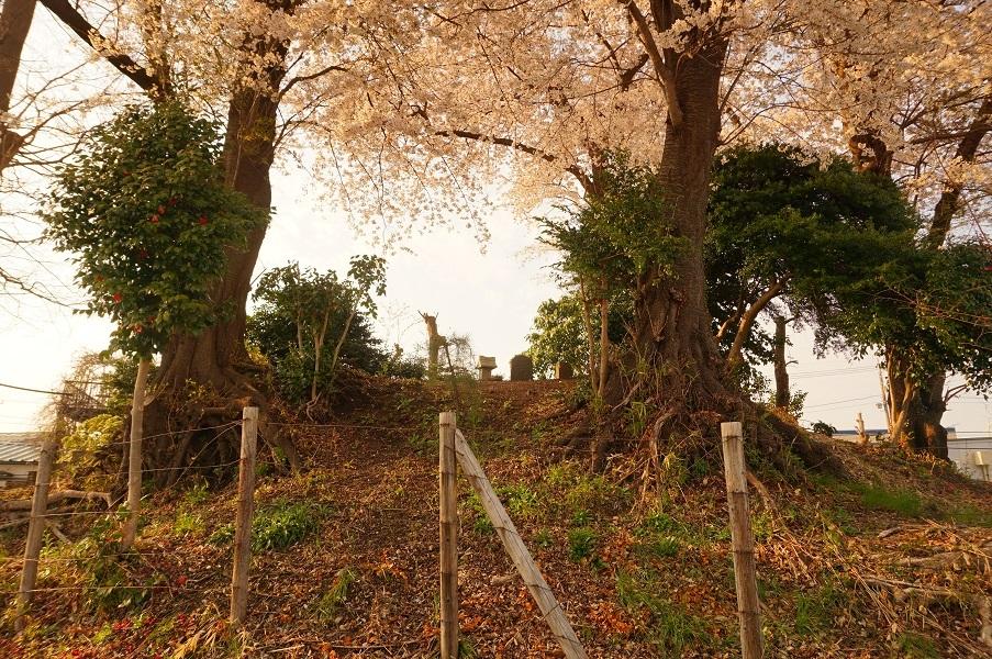 03 木曽富士塚(提灯塚)麓から頂上