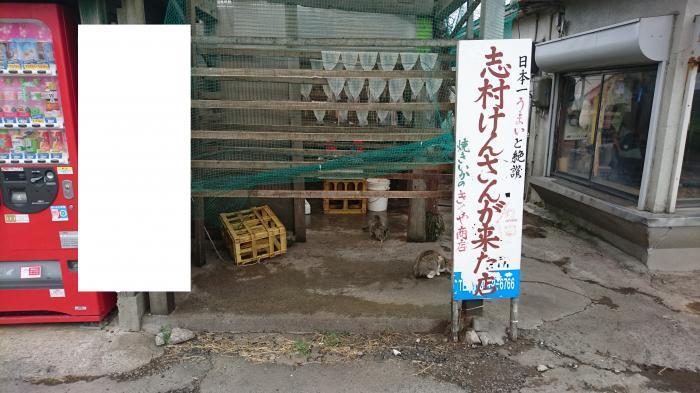七里長浜きくや商店3