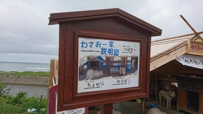 七里長浜きくや商店15