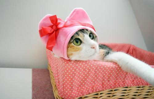みくピンクハート