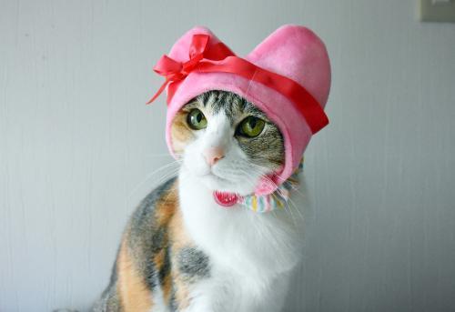 みくピンクハートおすまし