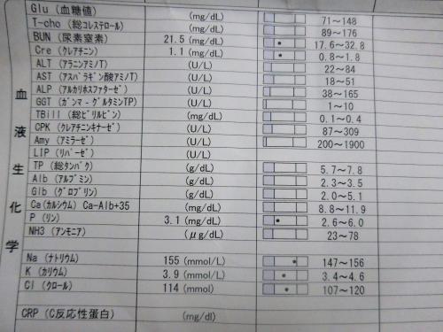 くぅ検査02