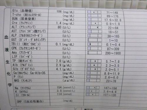 みく検査02