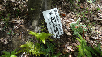響け!ユーフォニアム 聖地巡礼 大吉山