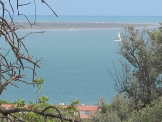 mediterraneeIMG_1578 (2)