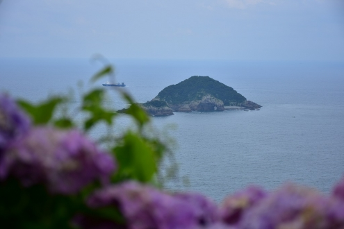 桃源郷岬 (4)