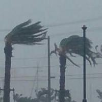 台風の雨風