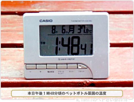 ガリガリ君51-1